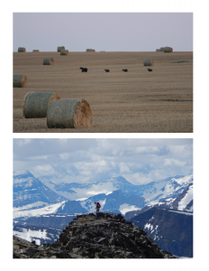 Bear Management Area 6 is unique, with productive agricultural lands and rugged peaks. Credit top: Angela Carter, Credit bottom: Spencer Rettler