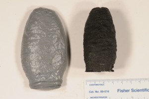 Casts of Cone