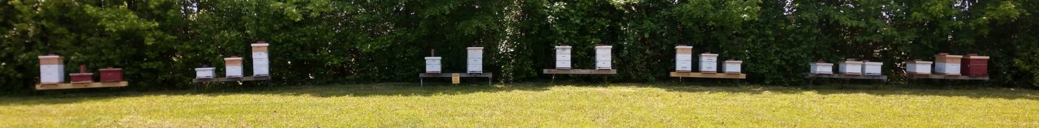 Research Apiary