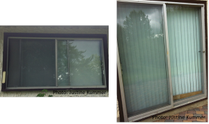 Closing window blinds helps minimize reflections but vegetation is still reflected in these windows
